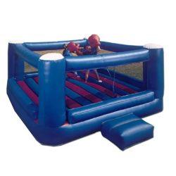 Boxer ring 01