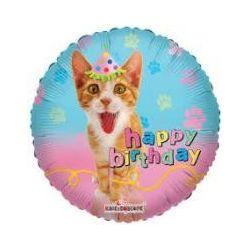 Balón Happy Birthday Mačka real