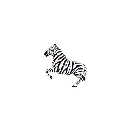 Balón Zebra